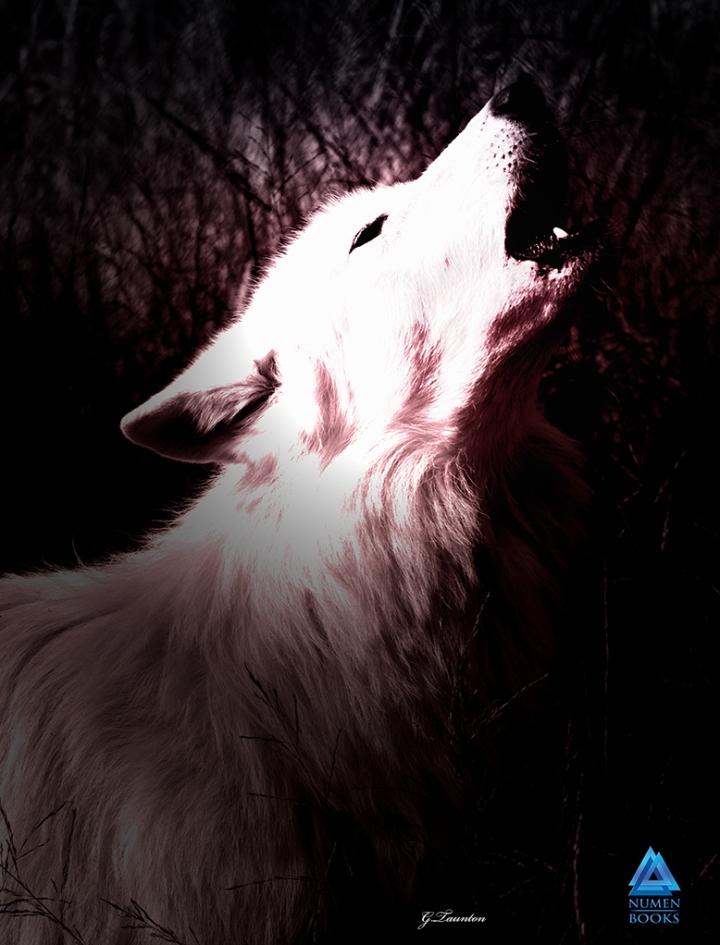 White Wolf, Gwendolyn Taunton, Graphic Design