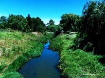 Countryside Creek